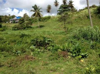 Accessible building lots in Sans Souci